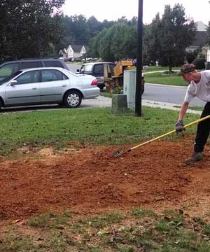 Stump Grinders Tree Service can remove tree stumps by having them ground down below the surface of the topsoil!